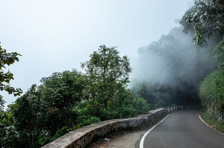 Wayanad tour from Surat - Gujarat with Iccon Holidays